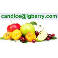 Quality Formulation blend juice powder instant fruit juice powder for sale
