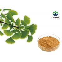 Quality Pure Ginkgo Biloba Powder With Low Pesticide Residue Chp2015 for sale