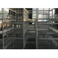 Quality H Type  Broiler Chicken Cage 180 Birds Capacity 1200×625×480 Mm For Chicken Farm for sale