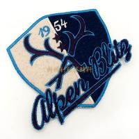 Colorful  And Embossed  Clothing Embroidered Patches For Clothing Iron On Backing