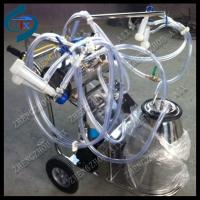 Quality lower price vacuum pump milking machine for sale