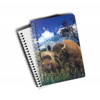 Quality A5 PET 3D Lenticular Notebook Customized Spiral Bound Notebook SGS Listed for sale