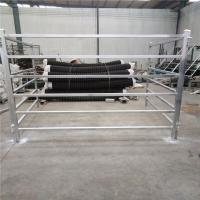 Quality Cattle Panels 50mm * 50mm RHS * 1.6mm thickness for sale