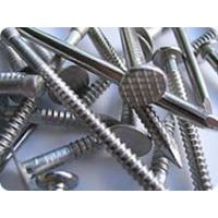 Quality drywall screw nails for sale