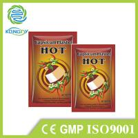 China Chinese traditional herbal pain patch CE certificate factory capsicum plaster on sale
