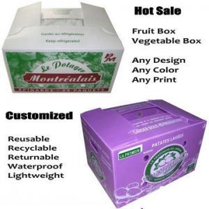 China White / Purple Reusable Waterproof Corrugated Plastic Trays / Flute Box on sale