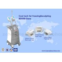 Quality 3 Size handles cryolipolysis cool slim body sculpting equipment / criolipolisys machine for sale