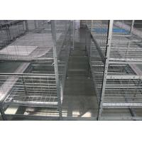 Quality Hot Dip Galvanized Layer Chicken Cage System Easy Use Free Layout Design for sale