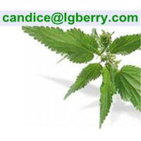 Buy cheap Nettle root extract / 6, 7-dihydroxybergamottin from wholesalers