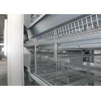 Quality Poultry Farm Automatic Egg Collection System Egg Collector Machine Easy To Use for sale