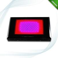 China 600W Square LED Plant Grow Lights Full Spectrum Growlights for Greenhouse and Grow tent on sale