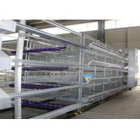 Quality Reliable Safety Cage Holding Poultry Chicken Breeding Cages Save Space for sale