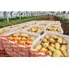 Buy cheap Fresh Potato from wholesalers