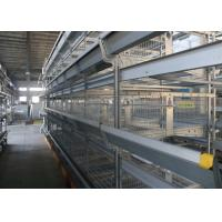 Quality Industrial  Automatic H Type Layer Chicken Cage Reduce Feed Wastage for sale