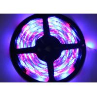 IP65 Waterproof RGB LED Strip Lights 3528 SMD Christmas Decorative