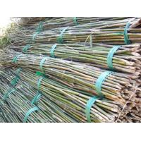 Quality Functional  Bamboo Pole Wear Resistant Environmental Friendly 0.1-12m Length for sale