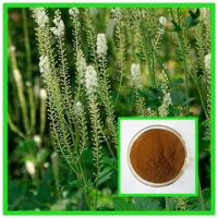 Quality Small Package Available 2.5%, 5% Triterpene glycosides HPLC Brown Powder Black Cohosh for sale