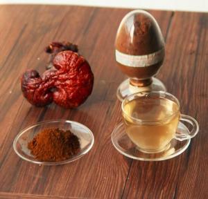 China 100% natural ganoderma lucidum extract powder of polysaccharides 30%, triterpene 2% on sale