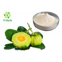 China HCA Weight Loss Supplement Powder 50% 60% Hydroxycitric Acid Garcinia Cambogia Extract on sale