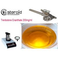 China Trenbolone Enanthate 200mg/ml Oil Based Steroids CAS 10161-33-8 For Mass Gaining on sale
