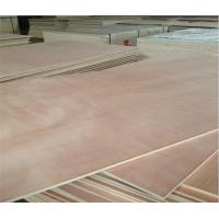 China 1220*2440*4-25mm poplar core E1/E2 glue okoume  plywood on sale