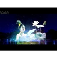 Quality PC Control Type Water Screen Projection Movie Show Large Scale Custom Design for sale