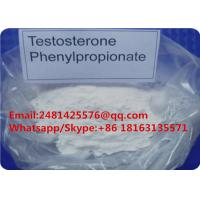 China Test Phenylpropionate Muscle Growth Anabolic Steroid Testosterone Phenylpropionate Powder on sale