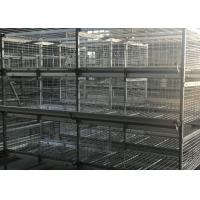 Quality Professional 4 Tiers Poultry Breeding Cages High Labor Production Efficiency for sale