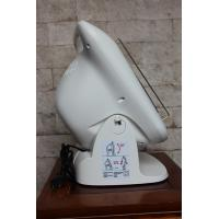 China 15 Minutes Automatic Cut Off Infrared Lamp For Pain By Using Far Infrared Ray Intermedia on sale