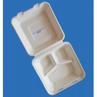 "Quality 9"" 3 Compartments Clamshell for sale"