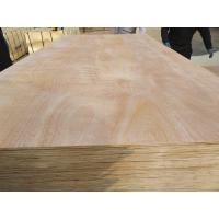China Okoume / bintangor veneer okoume plywood commercial plywood for furniture on sale