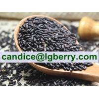 Quality Natural Black Rice Extract Cyanidin-3-glucosides (C3G) for sale