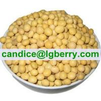 Buy cheap Concentrate Soya protein (NON-GMO soybean) from wholesalers