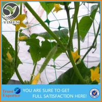 Hot Sale Plastic Plant Climbing Net Plant Support Net makes plants grow better and healthy
