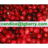 Quality Brand names lingonberry juice for sale