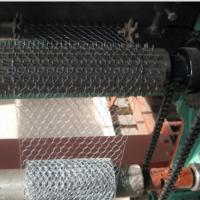 Quality Electro Galvanized Chicken Wire Netting for Wall Plastering and Building for sale