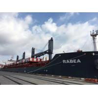 Quality Clipper Shipping Cargo Transport Services China To KUANTAN SINGAPORE for sale