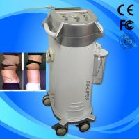 Quality Fat / Cellulite Reduction Power Assisted Slimming Beauty Equipment With Oil Free Vacuum Pump for sale
