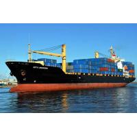 FCL Sea Freight Shipping to South America from Shenzhen