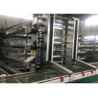Quality 90 Birds Hot Dip Galvanized H Type Layer Chicken Cage for sale