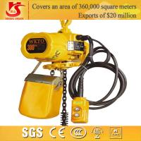 Quality Electric chain hoist/small electric pulley hoist/electric 300kg chain hoist for sale
