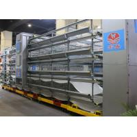 Quality Hot Galvanized Poultry Cage Equipment  H Type Layer Cage 90 - 240 Birds Capacity for sale
