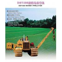 Quality DGY40SSwampPipelayer for sale