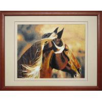 Products name:Horses