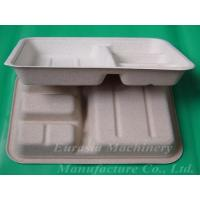 Quality Multi-layer pulp molding products for sale