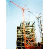 Quality Address:Home--Production--LDQ series track type cranes for sale