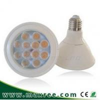 Best 12W PAR LED Lights, PAR30 LED Lamps, PAR LED Lights Manufacturer & Suppliers, PAR30-12W-P06 wholesale