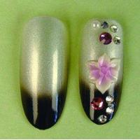 Buy cheap Artificial Nail tips KBN-SB1130 from wholesalers