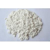 Quality Wood Cellulose Fiber for sale