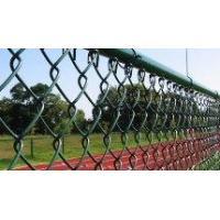 Quality PVC Chain Link Fence (Plastic Coated Chain Link Fence) for sale